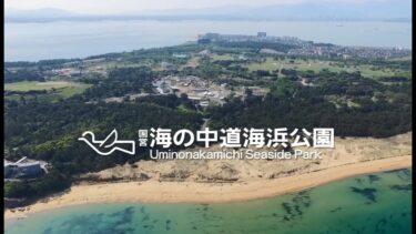 海の中道海浜公園の楽しみ方まとめ!激安入園料で楽しみ放題?